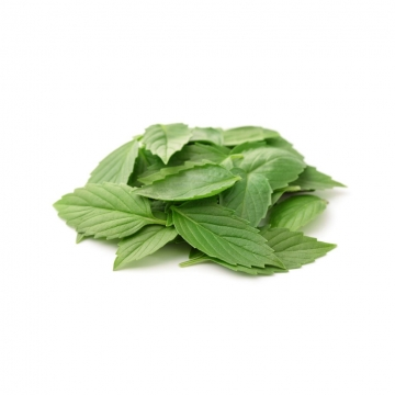 SWEET ITALIAN BASIL FRESH...