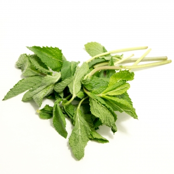 PEPPERMINT FRESH HERBS...