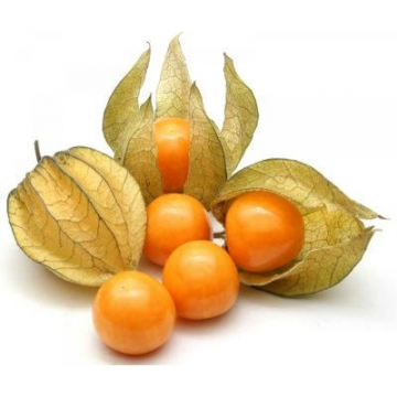 THAILAND CAPE GOOSEBERRIES...