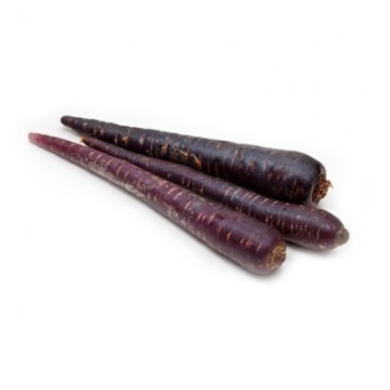 AUSTRALIA PURPLE CARROT...