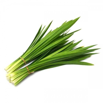 LOCAL PANDAN LEAVES 25G